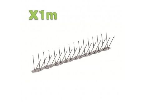 x1m Pic anti pigeon NUISIPIC1