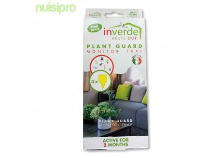 x3 pièges collant anti insectes pour les plantes